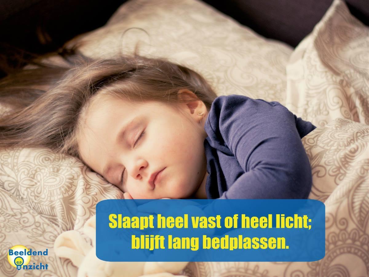 kenmerken beelddenken bedplassen slapen