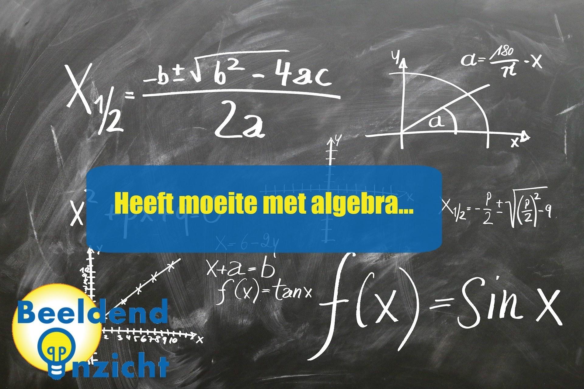 kenmerken beeldenken algebra wiskunde verhaalsommen redactiesommen